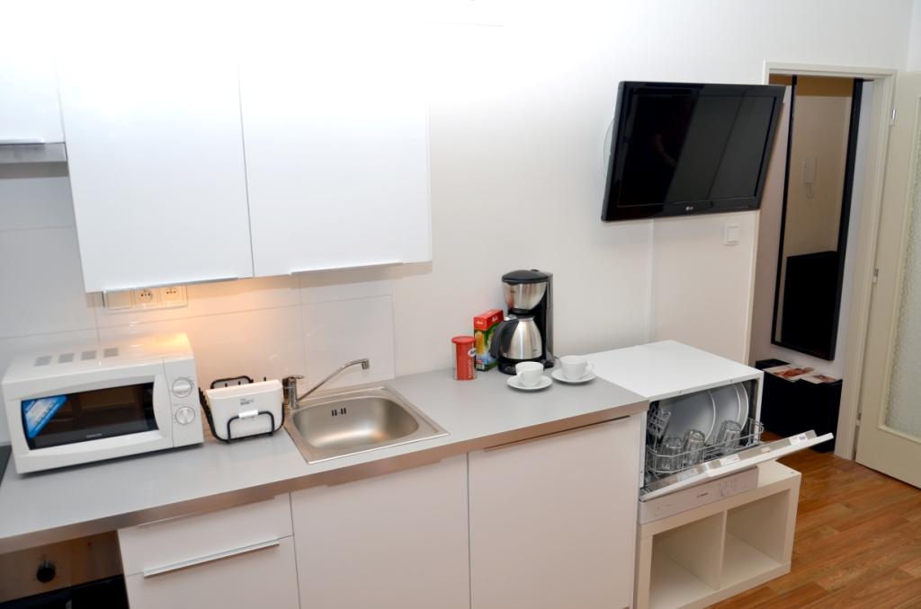 Charvatova-10 One Bedroom Apartments Kitchen
