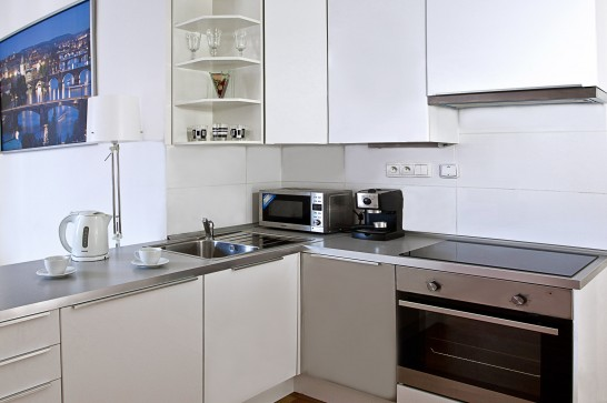 Charvatova-10 Superior One BedRoom Apartments whith terrace  - kitchen